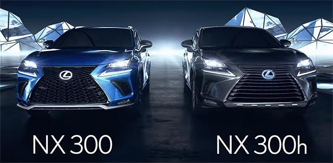 レクサス新型NXに物をしまうドライバー
