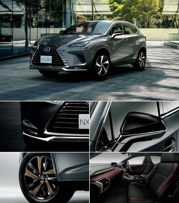 NX特別仕様車スパイスアンドチークの内外装