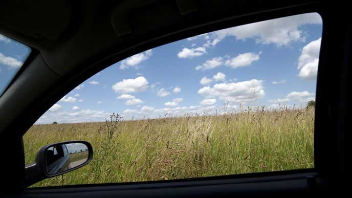 窓を開けて車内の曇りを取るドライバー