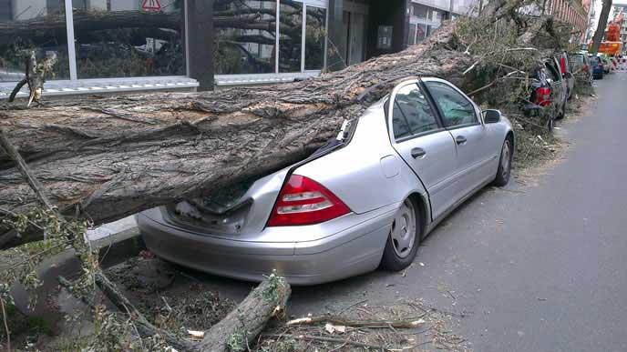 台風被害で大破した車