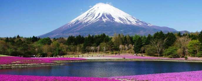 綺麗な景観の富士山
