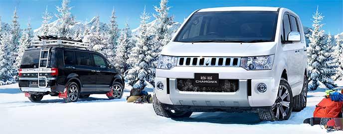 雪山で停車している2台のデリカD:5