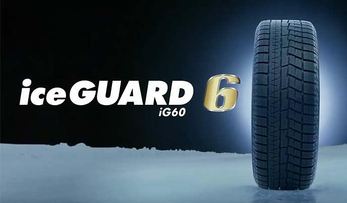 iceGUARD6