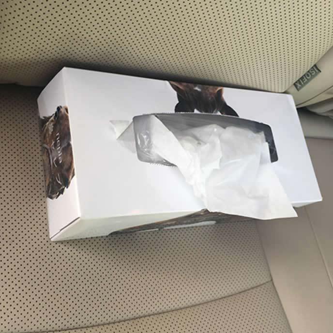 ねずみにかじられた車内のティッシュペーパー